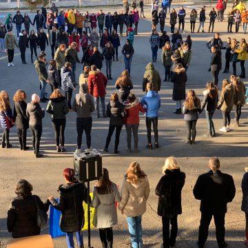 Promovare a interculturalitații, a diversității și a sentimentului național la Liceul Tehnologic Marmația