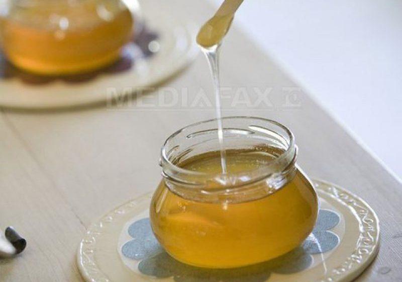 S-A VOTAT: Deputaţii au adoptat legea privind acordarea de miere de albine ca supliment nutritiv pentru elevi