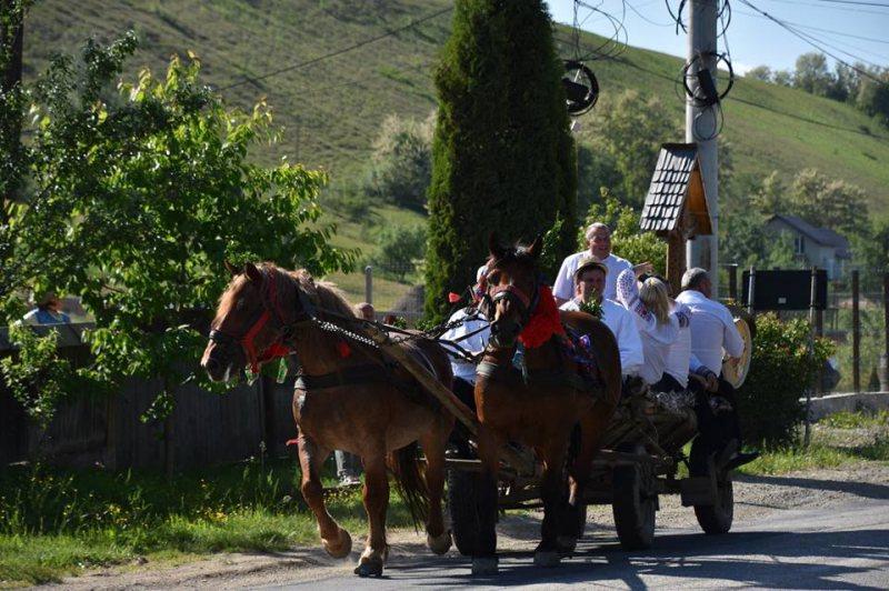 """SPECIAL DE CENTENAR: Zece căruțe trase de cai pornesc din Sighet spre Alba Iulia pentru a reface """"Drumul Unirii"""""""