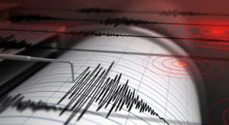 VRANCEA: Cutremur cu magnitudinea 3,2 pe scara Richter