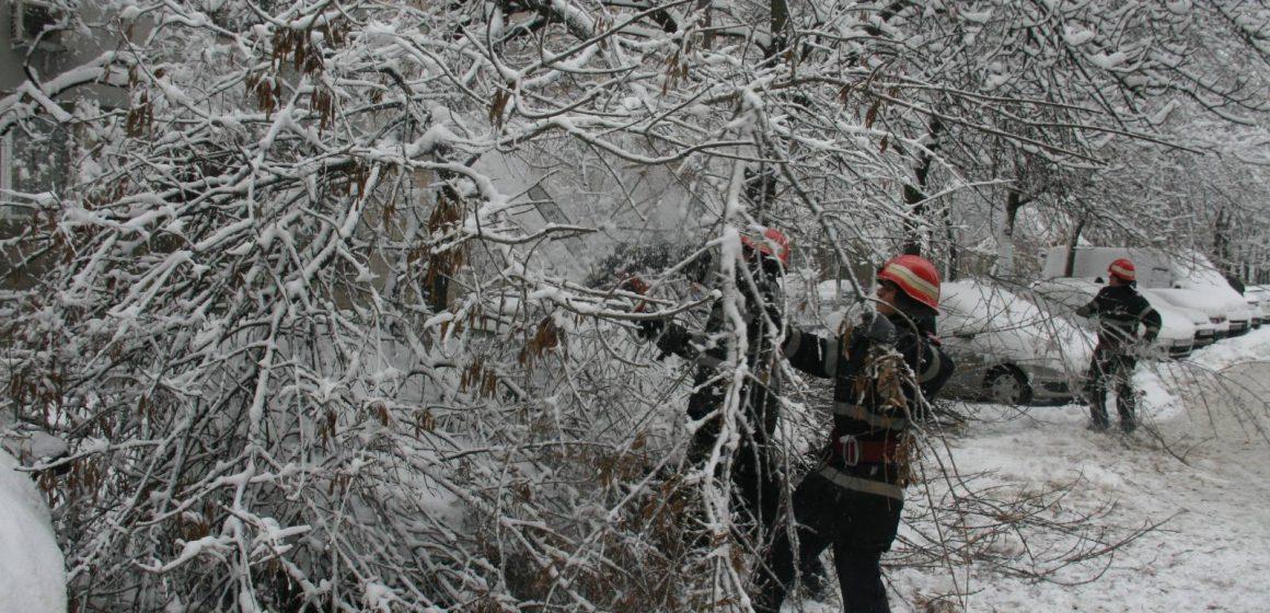 Iar ne-a luat iarna copacii pe nepregătite și cad peste firele de curent