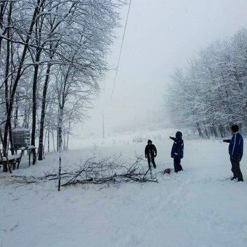 Cursuri suspendate mâine la unități de învățământ din localitățile Dumbrăvița, Boiu Mare, Șișești, Coltău și Remetea Chioarului