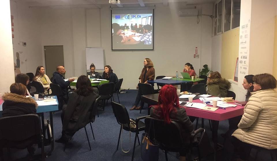 Consultare publică privind Standardele de Tineret la Baia Mare