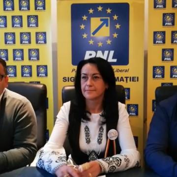 Video|Nemulțumiri legate de organizarea manifestărilor de 1 decembrie