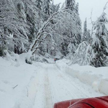 Drumurile județene 183 și 183A au fost închise temporar circulației rutiere
