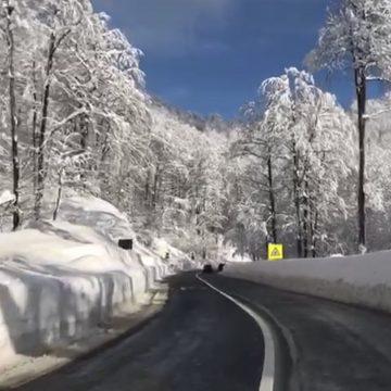 VIDEO | Peisaj de iarnă, în Maramureș