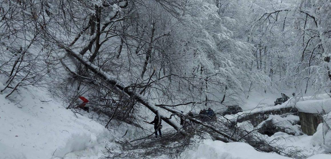 Circulație rutiera in conditii de iarna