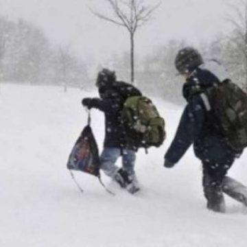 Video|Cursuri suspendate în mai multe școli din Maramureș