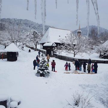 VIDEO   Iarna pe ulițele Muzeului Satului, la săniuș