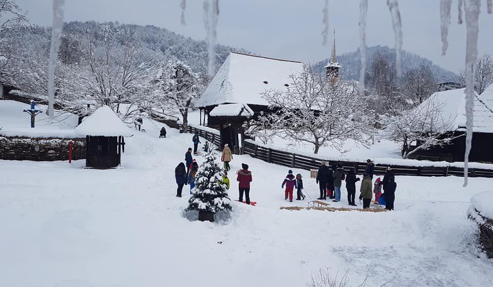 VIDEO | Iarna pe ulițele Muzeului Satului, la săniuș