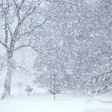VIDEO | Cod galben de ninsori în Maramureș