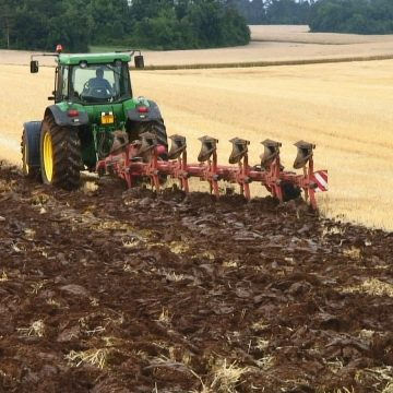 Campania de depunere a cererilor unice de plată în sectorul agricol demarează la 1 martie 2019
