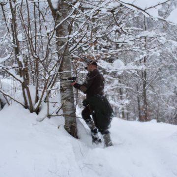 Video|Parcul Național Munții Rodnei, monitorizat cu ajutorul camerelor video