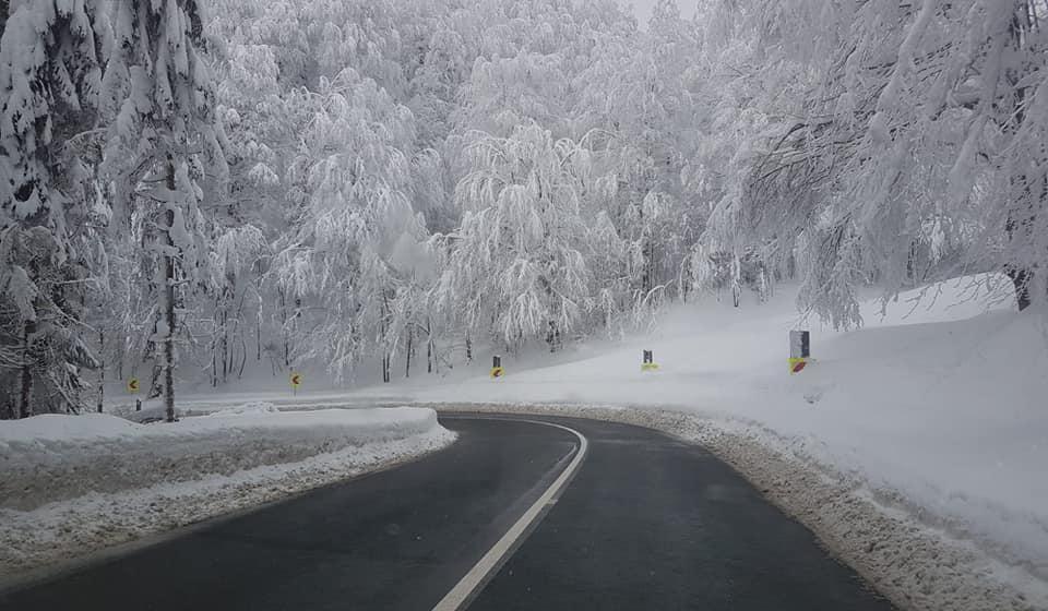 Vizibilitate redusă de ceață în Pasul Gutai, la Sighetu Marmatiei, Viseu de Sus si Pasul Prislop