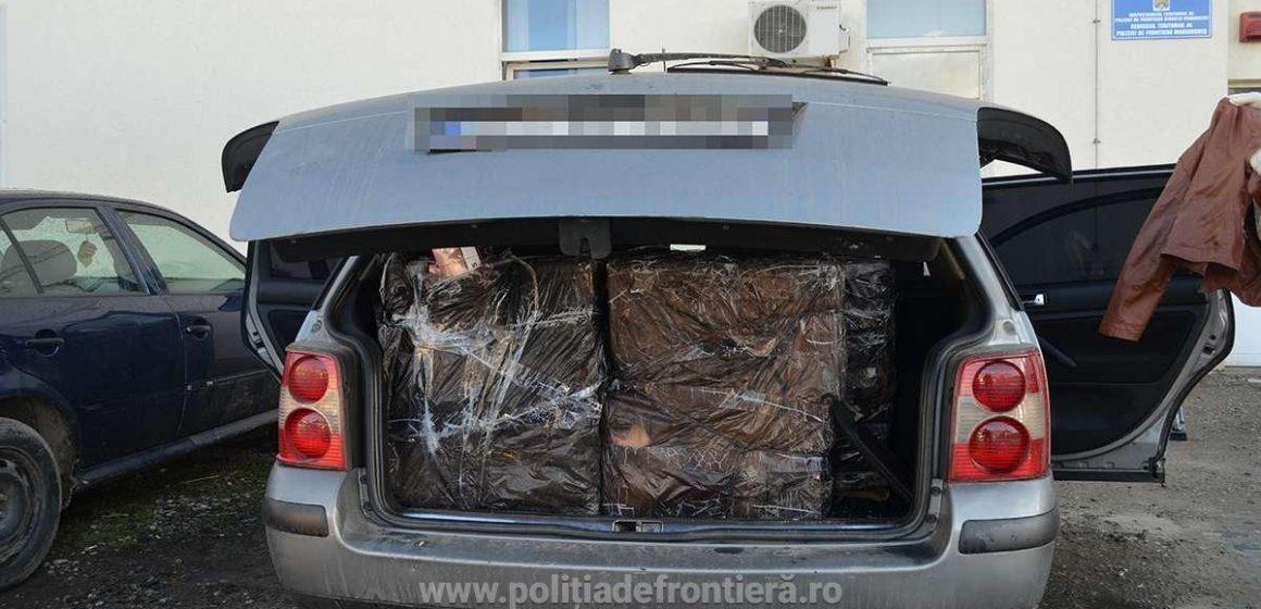 Aproape 6.000 de pachete de țigări confiscate dintr-un autoturism