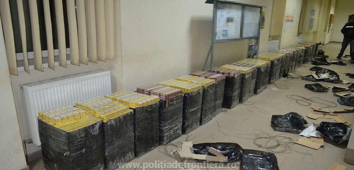 VIDEO | Aproape 62.000 de pachete cu țigări confiscate, iar doi bărbați sunt cercetați pentru contrabandă