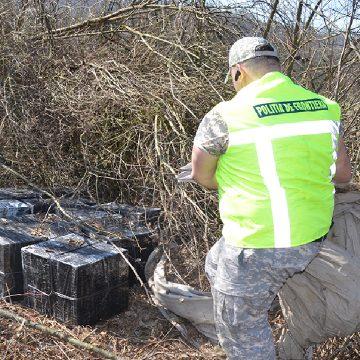Captură de peste 174.000 de pachete cu țigări în valoare de aproximativ 431.000 euro la frontiera de nord