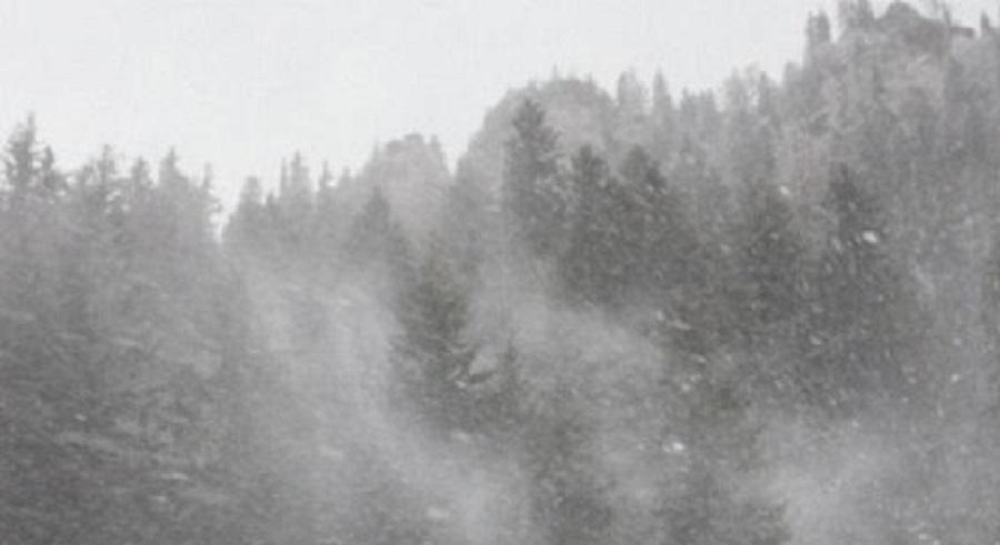 Avem cod galben de vânt puternic plus ninsori viscolite în Maramureș
