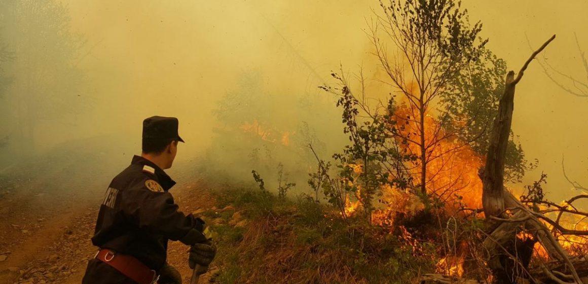Video|Sfaturi de la pompieri