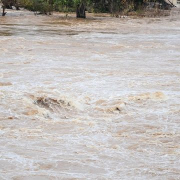 Cod galben de depășiri ale cotelor de atenție pe râuri din Maramureș