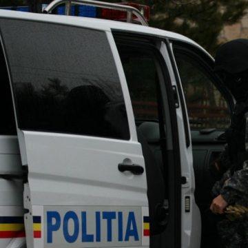 Șapte arme ridicate în urma unor percheziții la Borșa