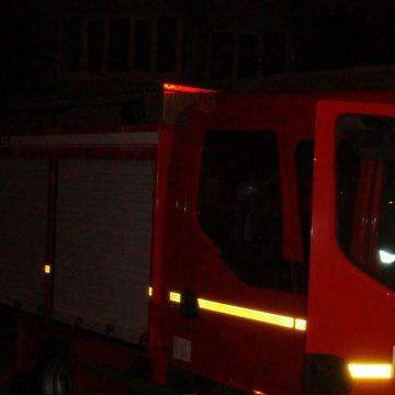 VIDEO | Două cadavre carbonizate găsite de pompierii care au stins un incendiu de vegetație uscată