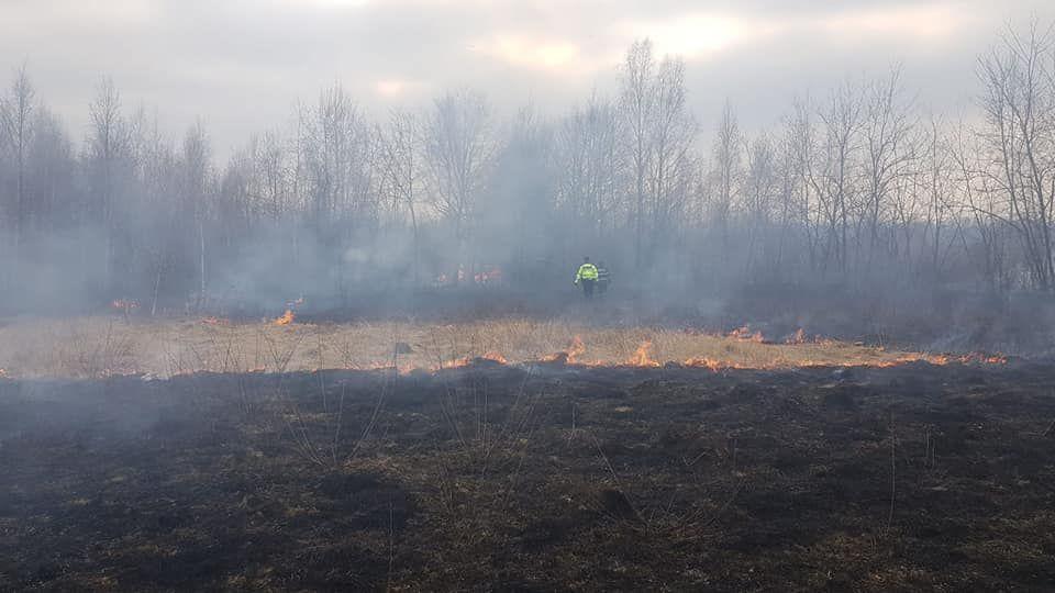 50 de hectare de vegetație uscată arse în incendiile din ultimele zile