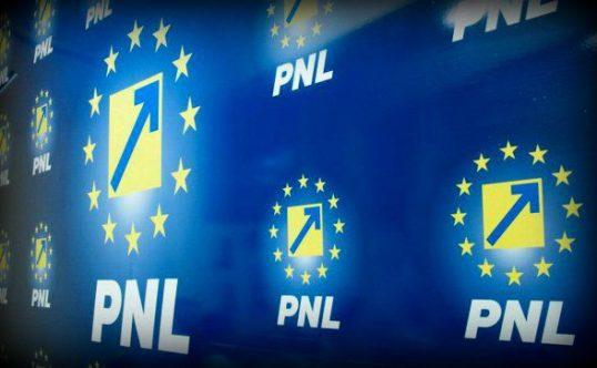 PNL: Disprețul – unitatea de măsură a guvernării lui Dragnea. PSD are pata pusă pe românii din Diaspora