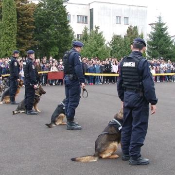VIDEO | Jandarmii, la demonstrații de Ziua Porților Deschise