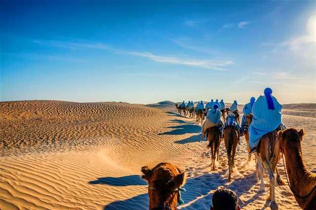 excursie camile Sahara