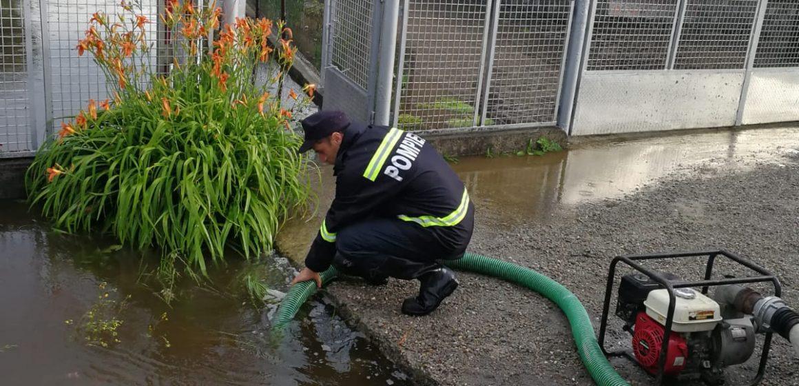 Mai multe gospodării din Săpânța au fost inundate