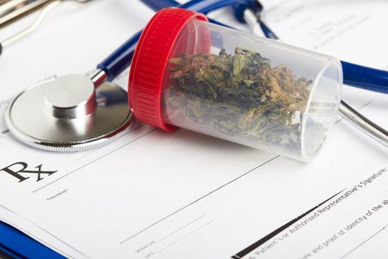 Sorina Pintea, despre proiectul privind introducerea canabisului medicinal: Nu pot fi în totalitate de acord