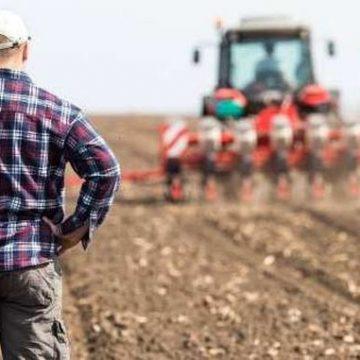 Fermierii vor putea beneficia de câte 15.000 euro pentru dezvoltarea exploatațiilor agricole de mici dimensiuni