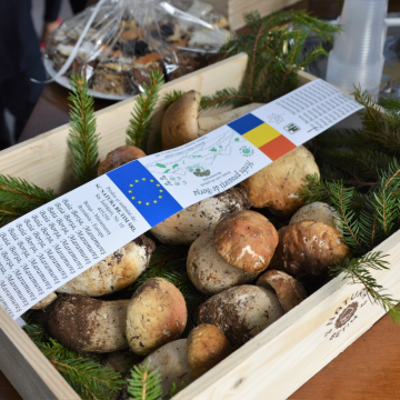 GALERIE FOTO | Festivalul hribilor, în Borșa