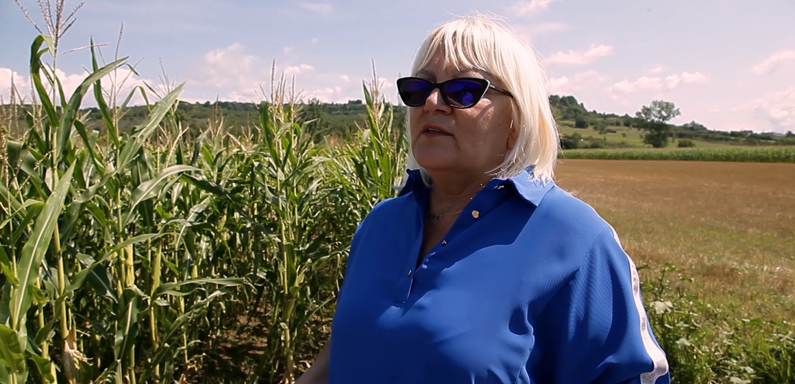 VIDEO | Senatorul Severica Covaciu, la discuții cu maramureșenii care se plâng că mistreții le distrug culturile