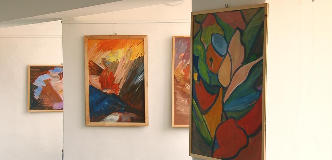 """""""Geometria naturii în culoare"""", la Biblioteca Județeană"""