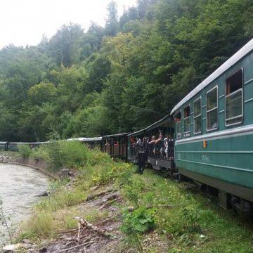 VIDEO | Verificări la Mocănița de pe Valea Vaserului după două deraieri într-o săptămână