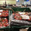 Șarpele găsit pe raftul unui supermarket era inofensiv
