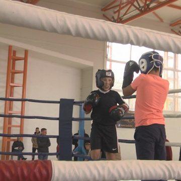 VIDEO | Sala de sport din Ocna Șugatag a găzduit în weekend cea de-a două etapă a competiției de kickboxing, Golden Promotion Fight