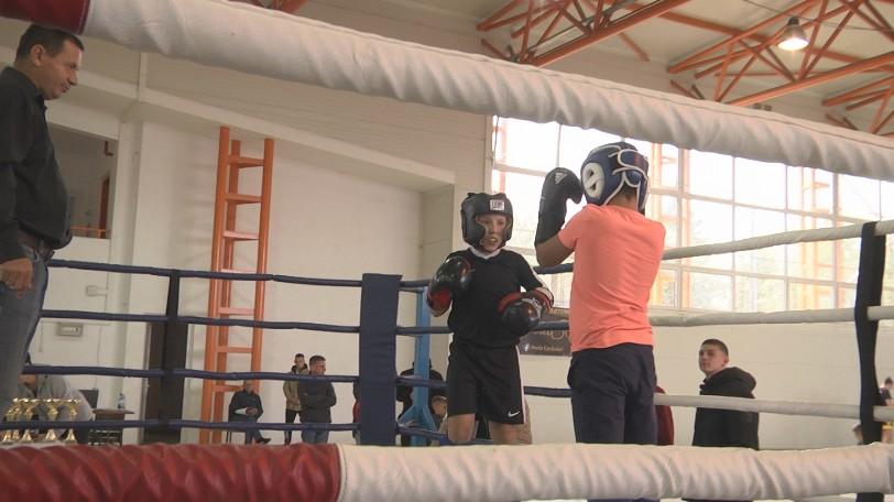VIDEO   Sala de sport din Ocna Șugatag a găzduit în weekend cea de-a două etapă a competiției de kickboxing, Golden Promotion Fight