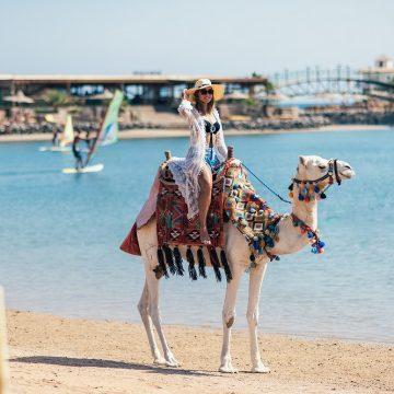 În premieră pentru vara 2020: EGIPT DIN BAIA MARE!