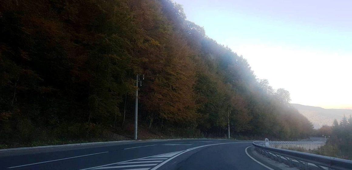 Acțiune de tăiere a arborilor marcați care pot pune în pericol desfășurarea circulației rutiere în Pasul Gutâi