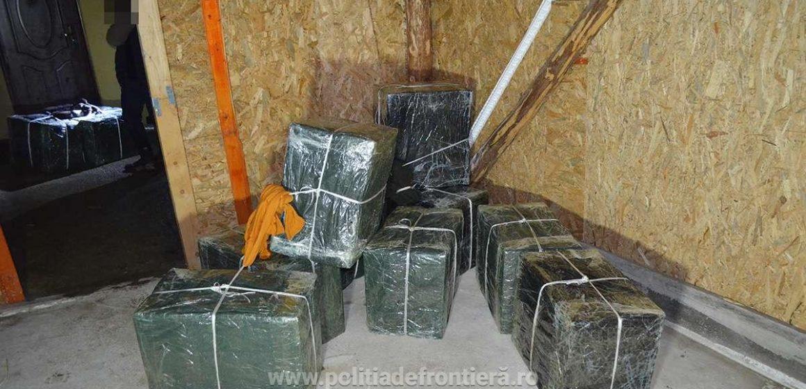 VIDEO | Peste 21.000 de pachete cu țigări de contrabandă au fost confiscate