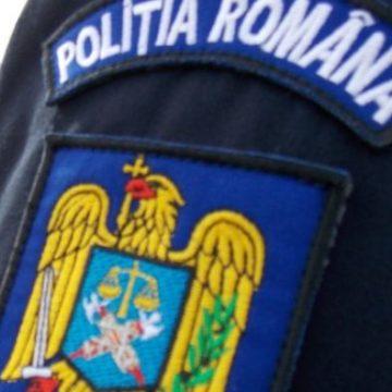 Activitatea Serviciului Rutier Maramureş ce implică relația cu publiculse suspendă