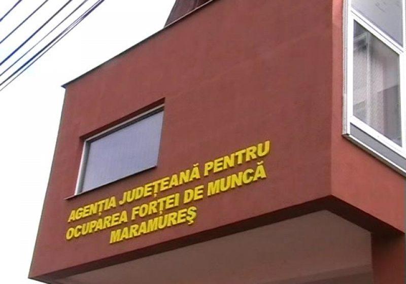 VIDEO | Va crește semnificativ rata șomajului în Maramureș