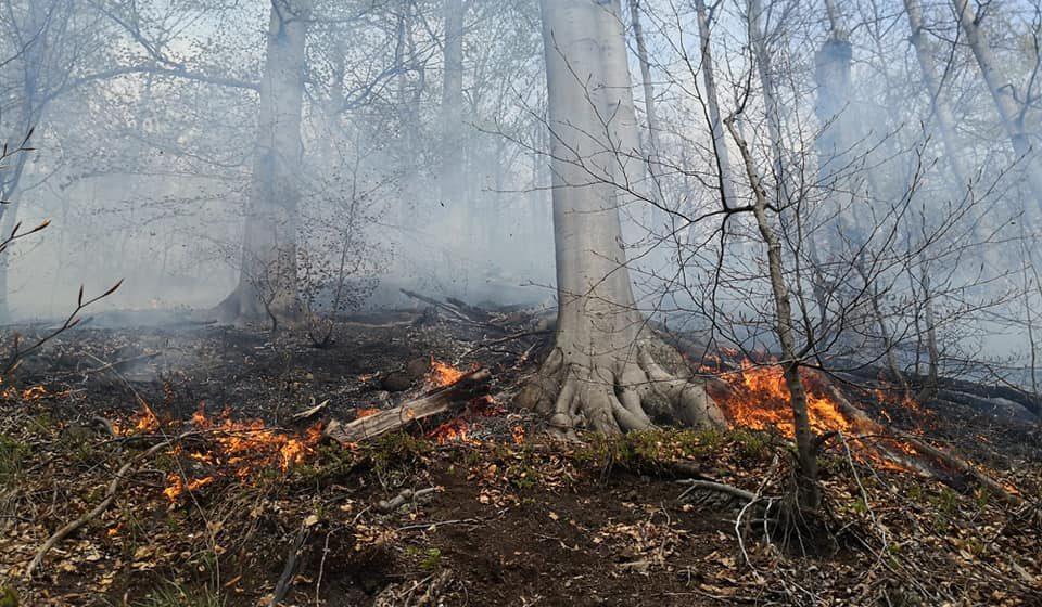 Weekend plin pentru salvamontiști – au intervenit și la un incendiu, și la un accident dintr-o zonă greu accesibilă