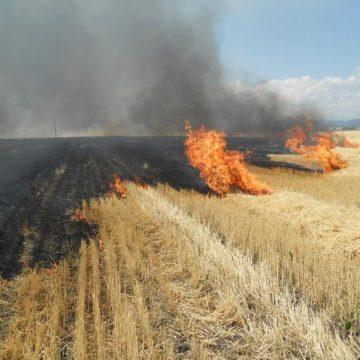 Primarul comunei Bârsana face apel la cetățeni să nu folosească focul deschis pentru curățarea terenurile