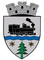 Primăria Orașul Vișeu de Sus organizează licitatie publică pentru vânzarea unor terenuri
