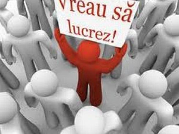 VIDEO | Crește numărul șomerilor în Maramureș, dar a scăzut numărul solicitărilor pentru șomaj tehnic