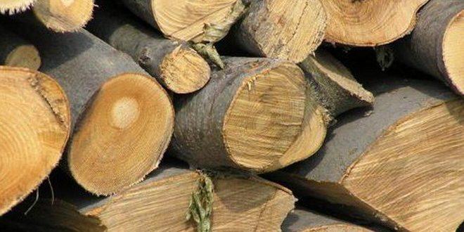 Material lemnos confiscat de poliţişti în Cicârlău şi Prislop